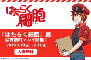 はたらく細胞展 in 有楽町マルイ 2.17まで入場無料で展示会開催中!!
